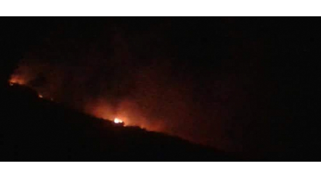 Pertek'te orman yangını